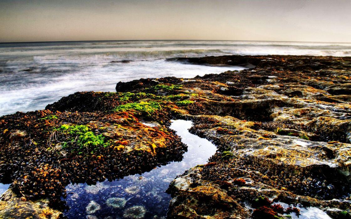 Pebbles beach wallpaper