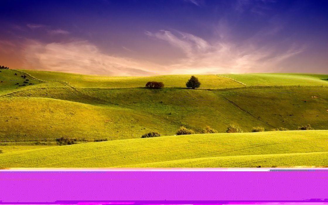 Summer green hill wallpaper