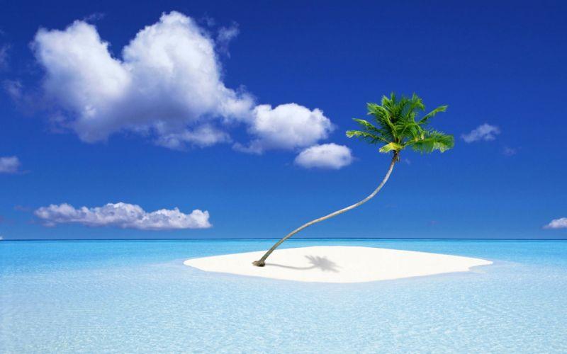A Palm Tree Island wallpaper