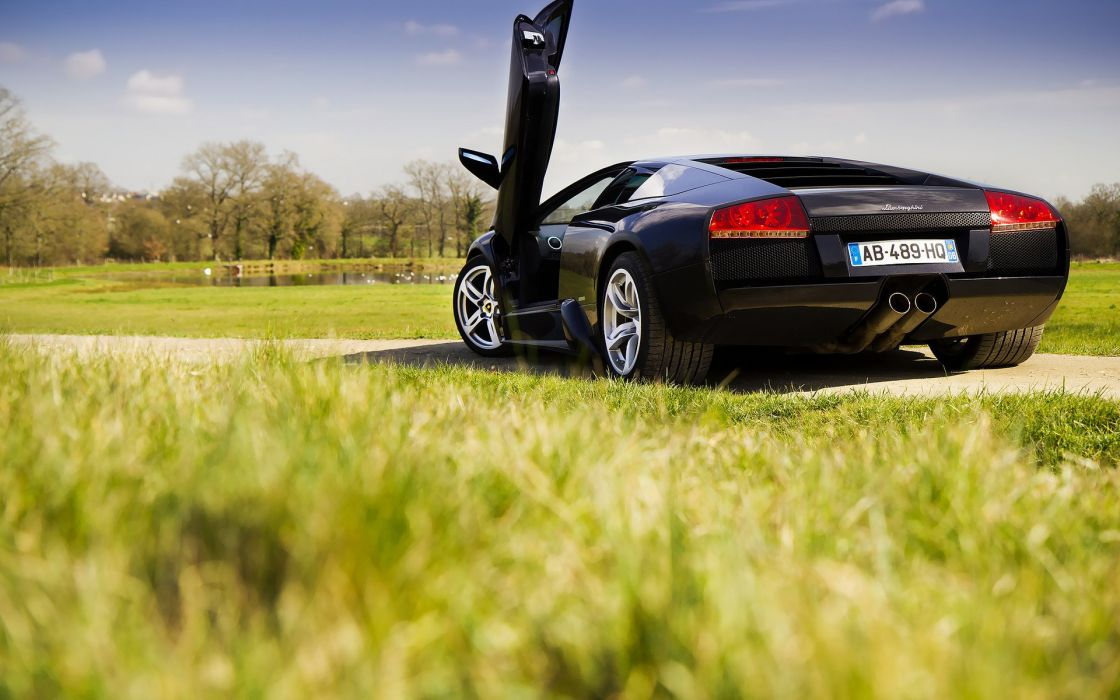 Black lamborghini murcielago in park wallpaper