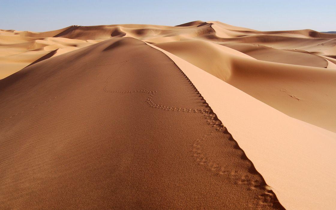 Sea of sand wallpaper