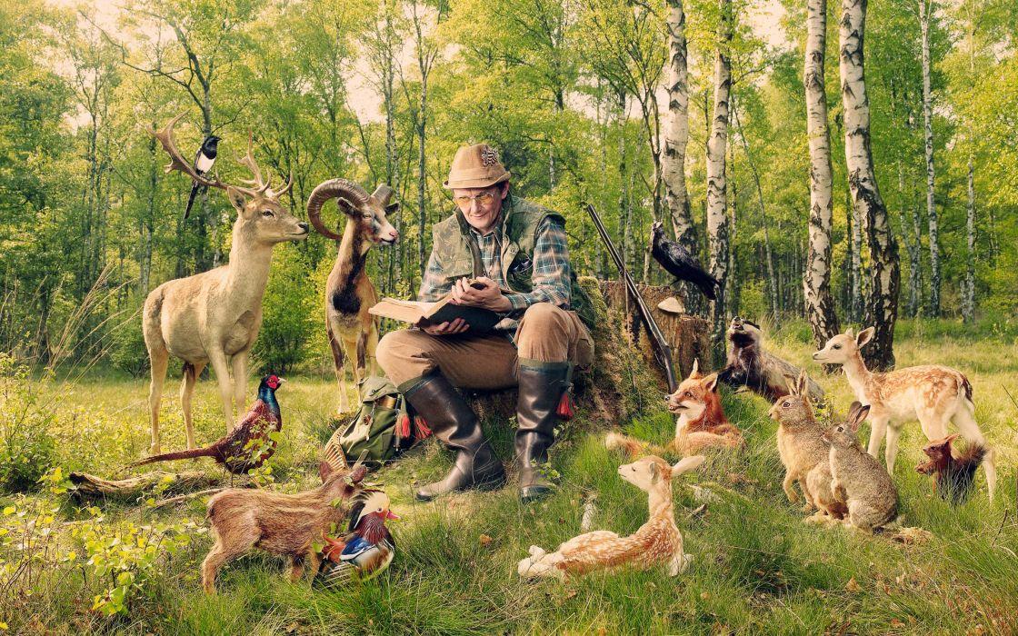 The story hunter wallpaper