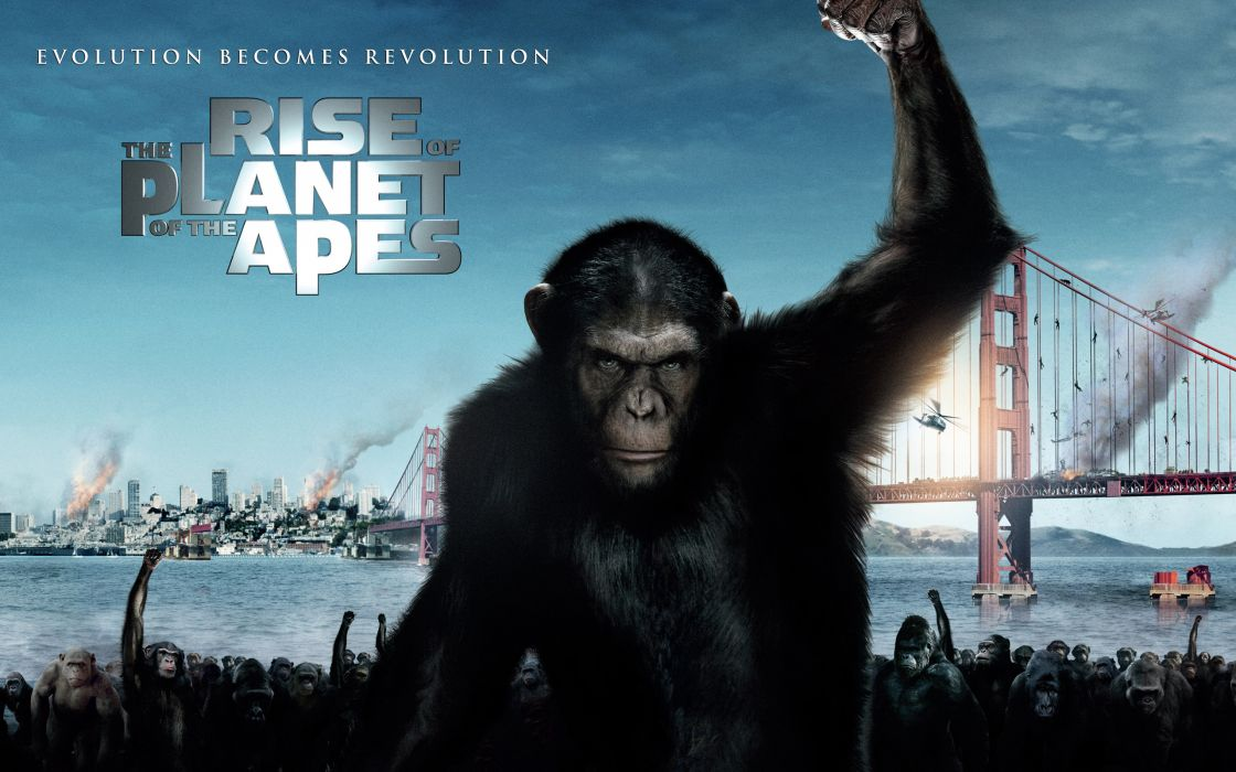 2011 Rise of the planet of the apes wallpaper