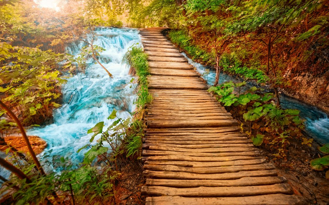Wooden path wallpaper