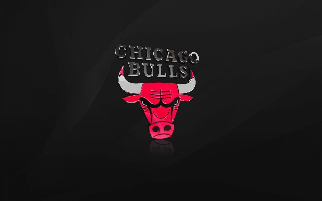The chicago bulls wallpaper