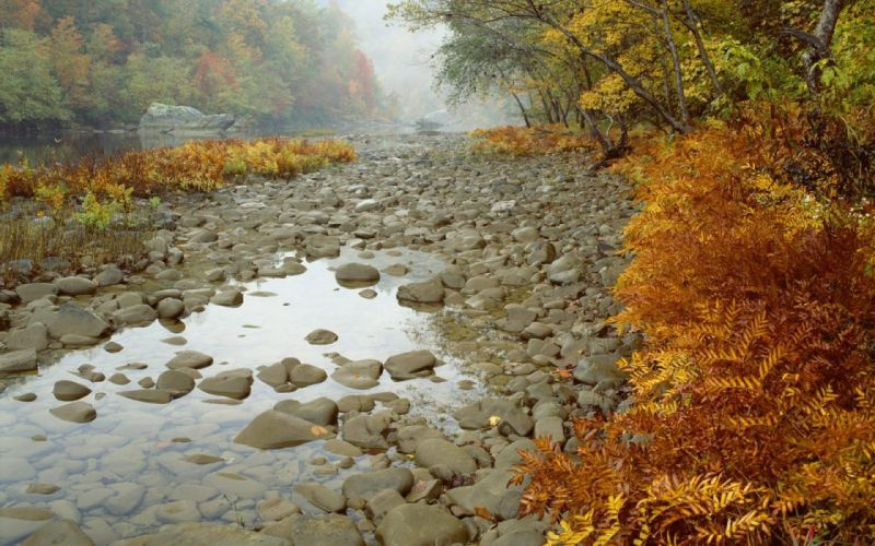 River stones wallpaper