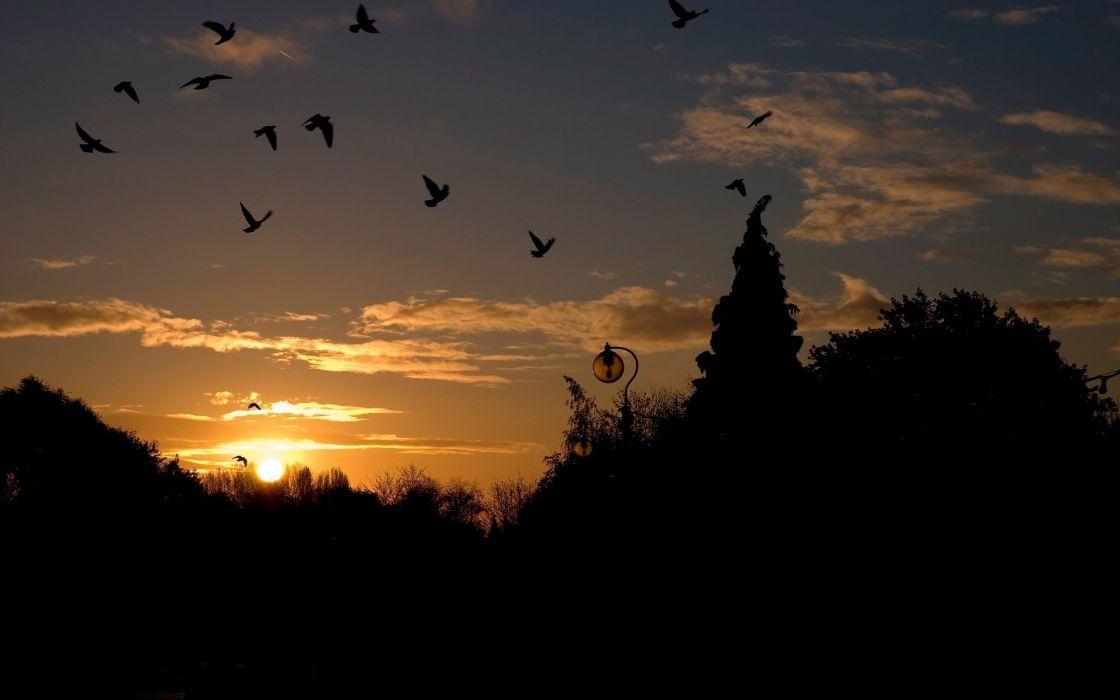 Sunset landscape wallpaper