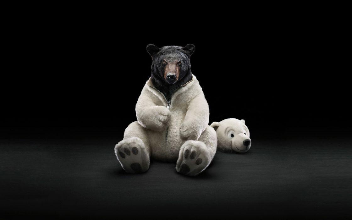 Dressed bear wallpaper