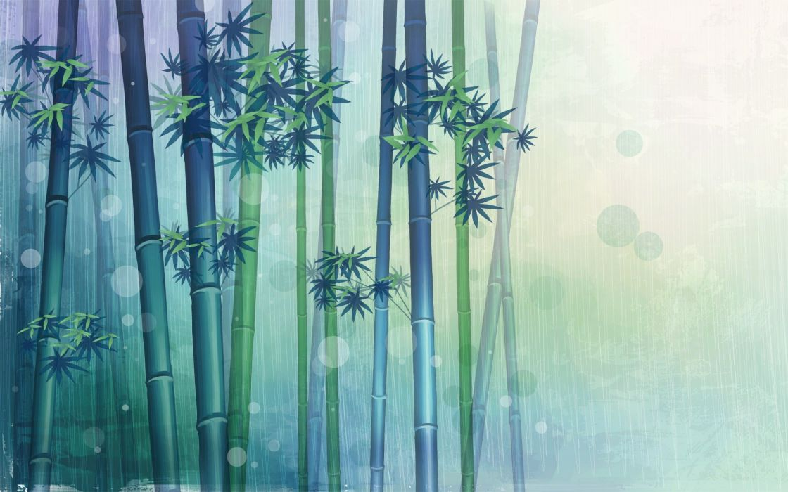 Bamboo wall paper wallpaper