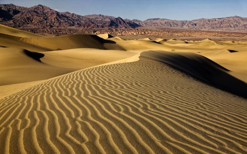 Desert dune wallpaper