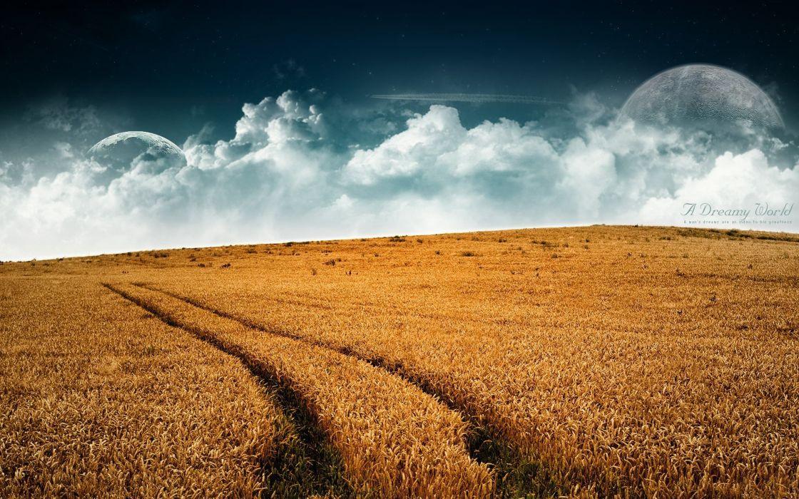 Field dreamy world wallpaper