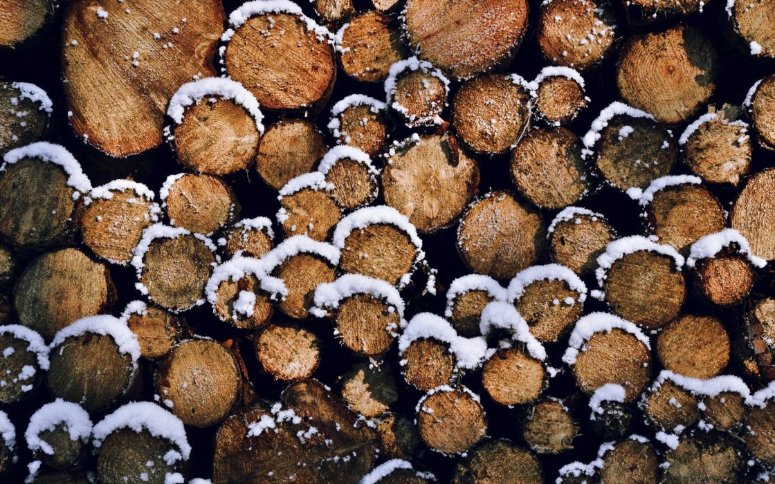Wood covered with snow wallpaper