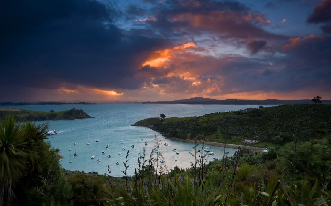 Waiheke island new zealand  wallpaper