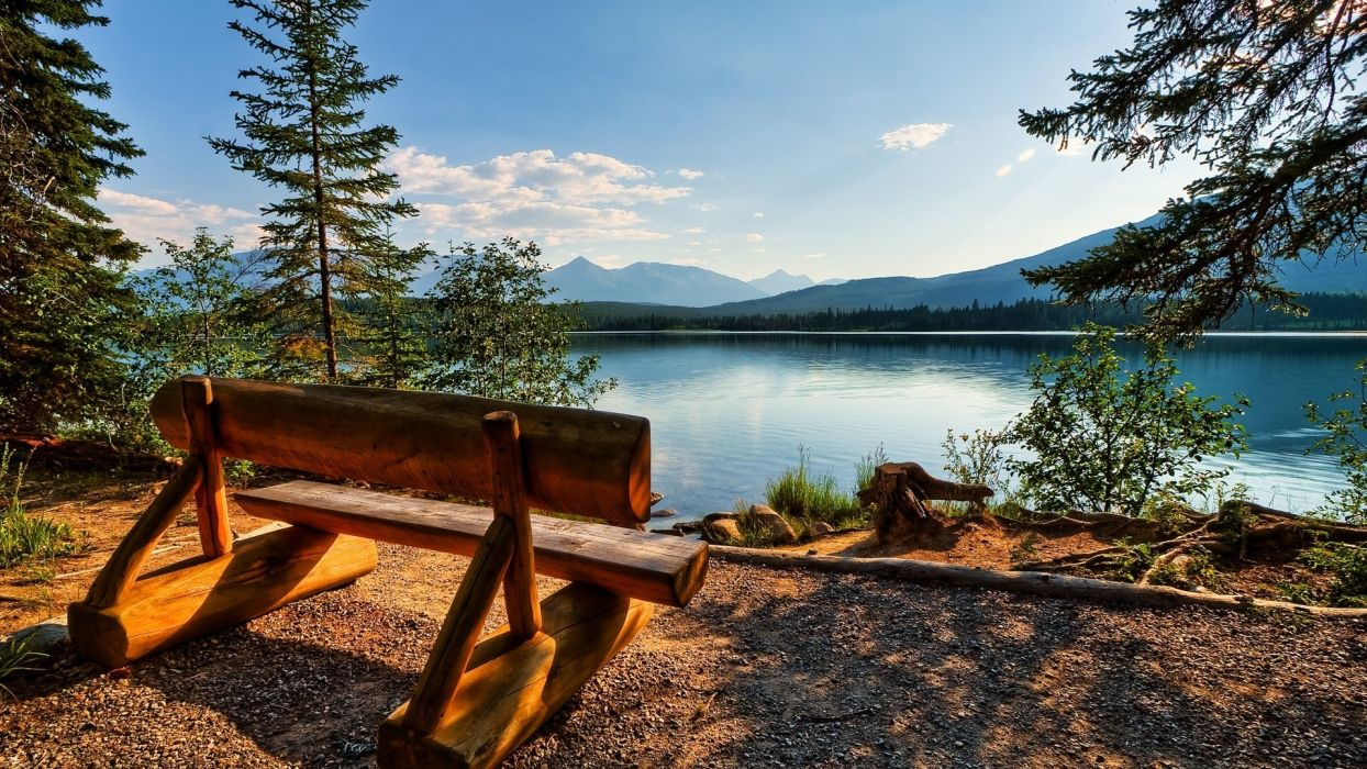 Realxing bench near a lovely lake wallpaper