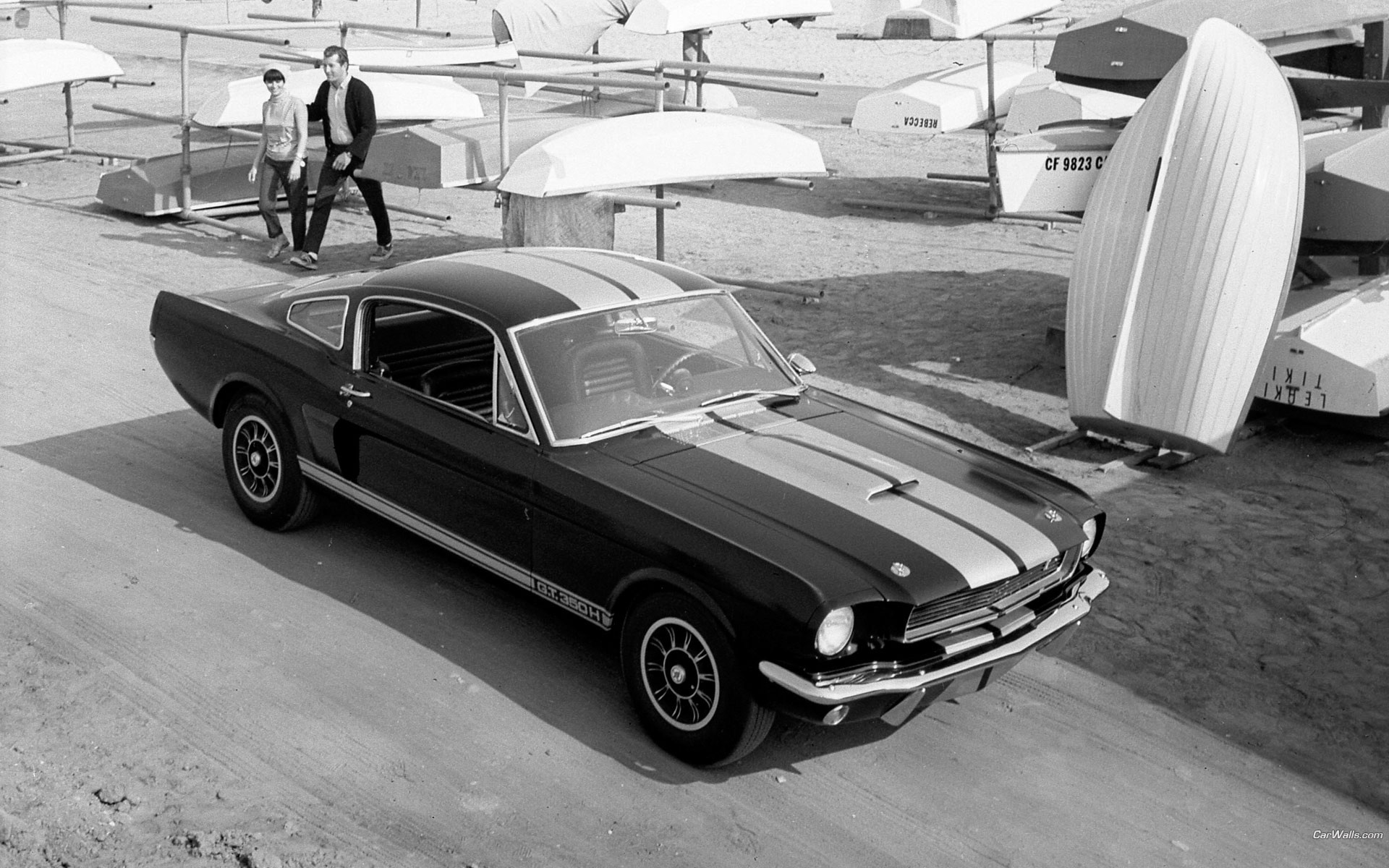 Ford muscle cars vehicles ford mustang classic cars ford shelby ...