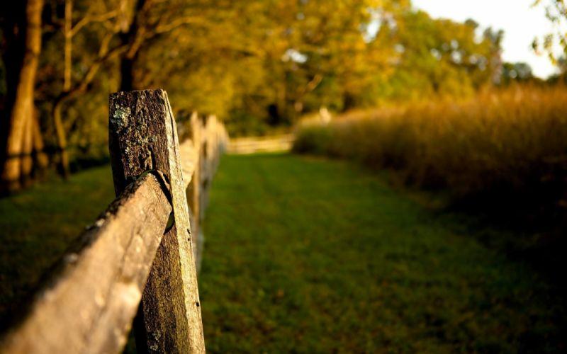 Landscapes nature fences wallpaper