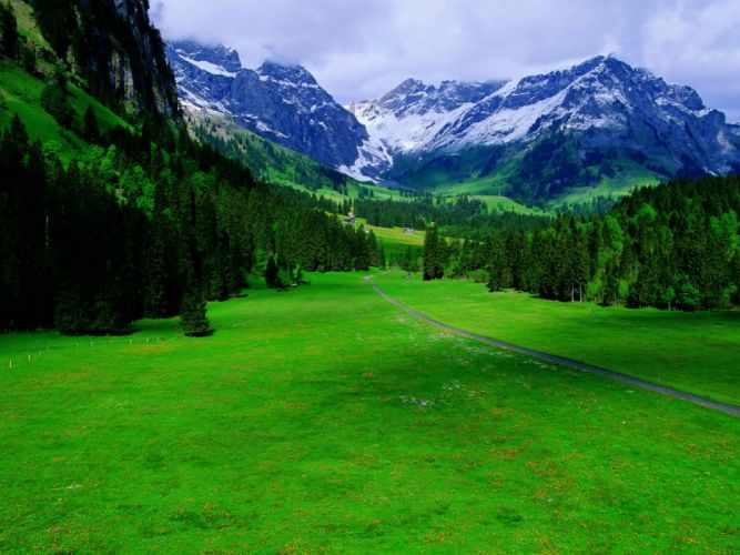 Green landscapes switzerland wallpaper