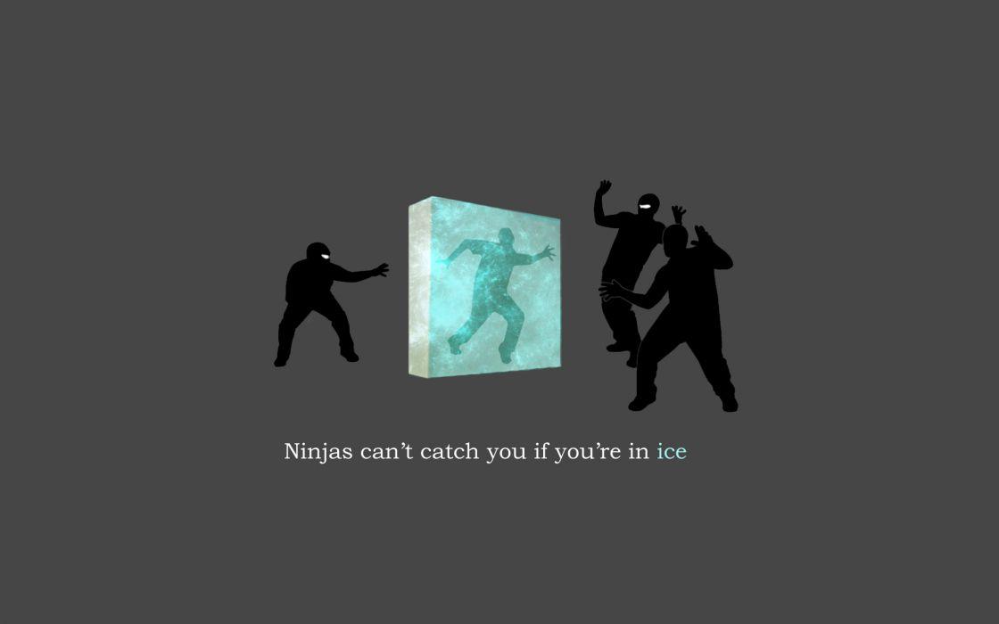 Ice ninjas ninjas cant catch you if shock wallpaper
