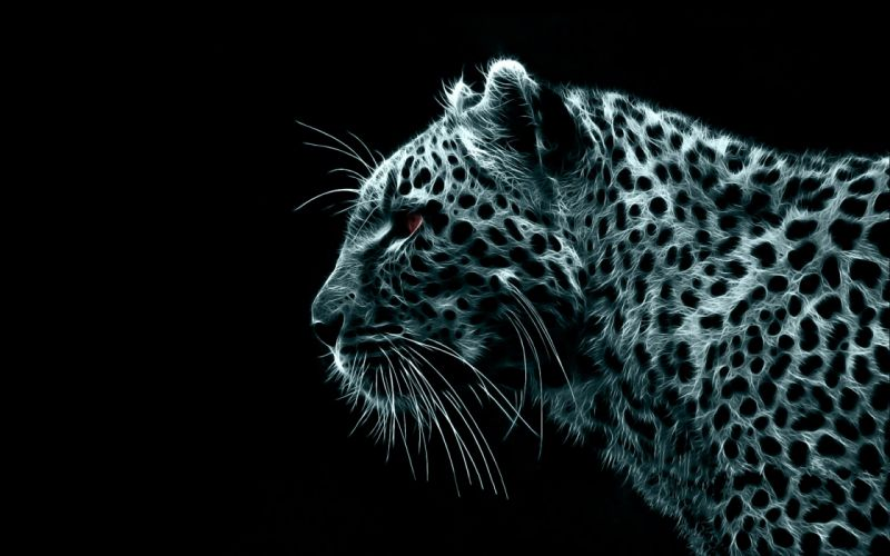 Digital fractalius leopards black background wallpaper