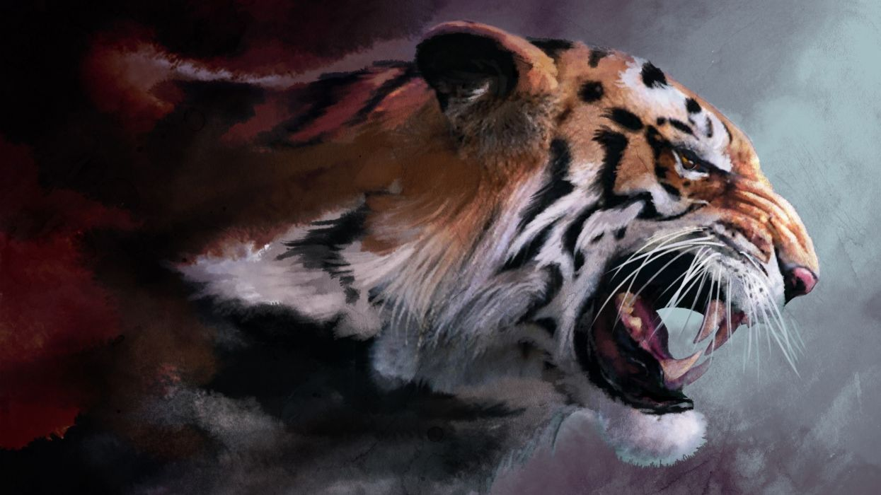 Tigers drawings wallpaper