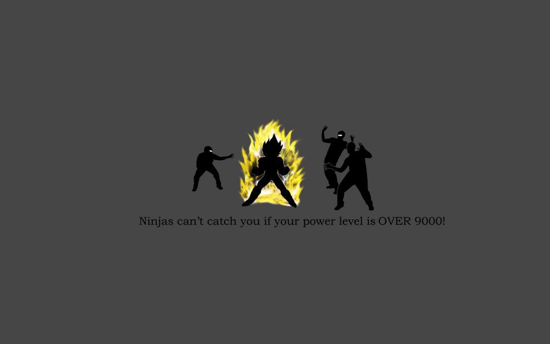 Ninjas ninjas cant catch you if dragonball wallpaper