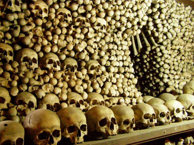 Paris skulls catacombes wallpaper