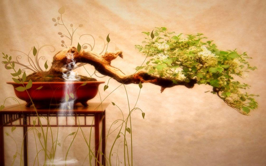 Trees japanese bonsai wallpaper