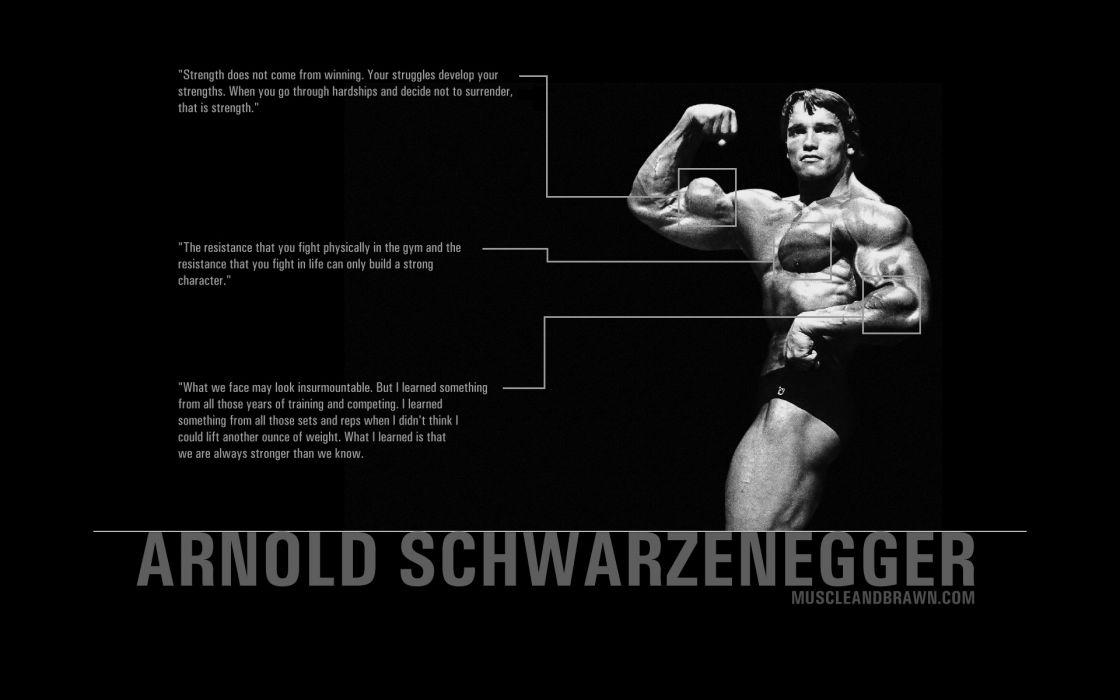 Quotes arnold schwarzenegger wallpaper