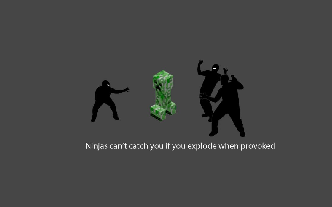 Ninjas cant catch you if minecraft wallpaper