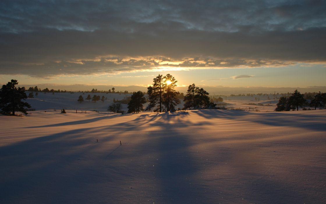 Landscapes winter white wallpaper