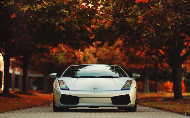 Autumn cars leaves vehicles lamborghini gallardo wallpaper