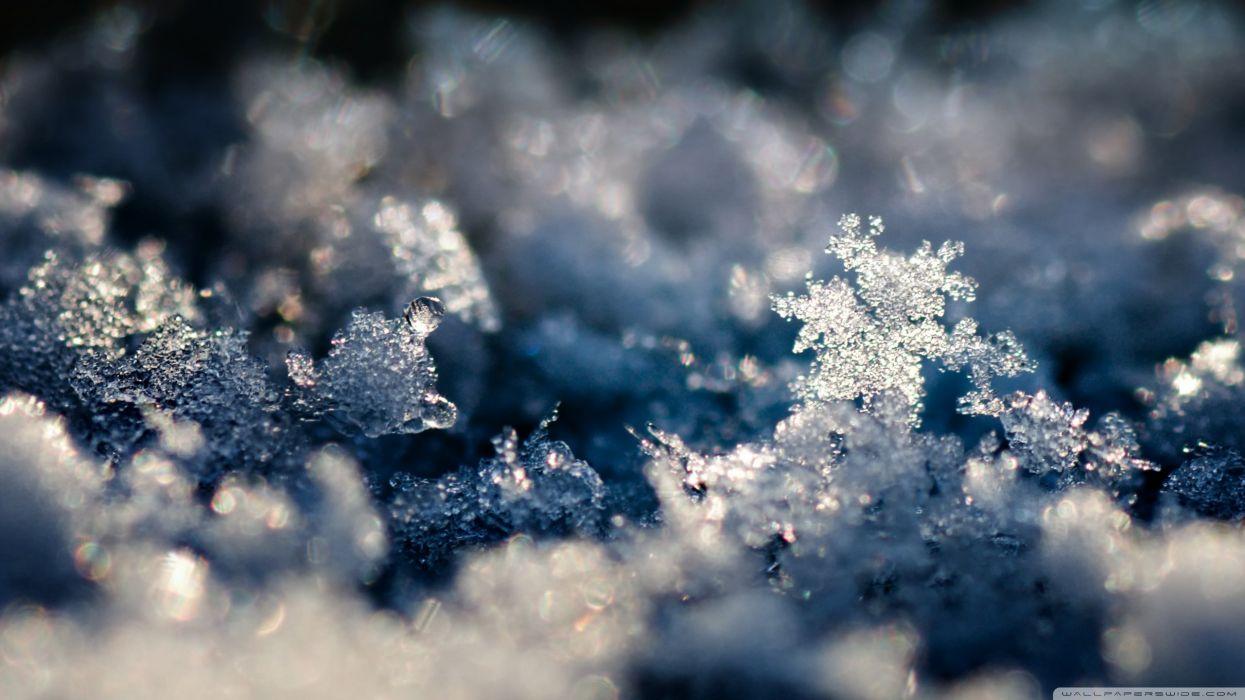 Ice snowflakes slush wallpaper