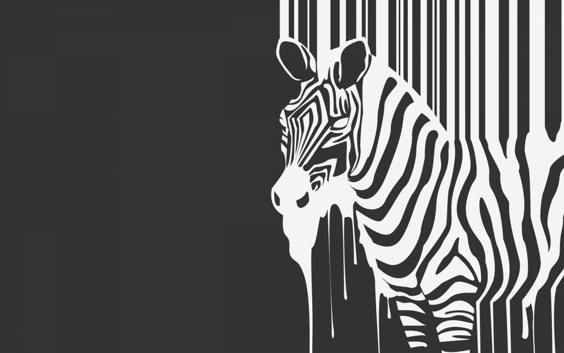 Minimalistic zebras creative wallpaper