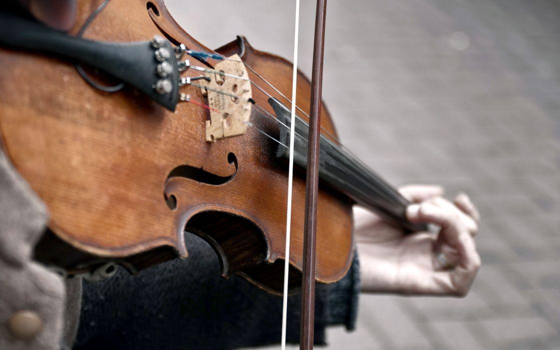 Violins violinist wallpaper