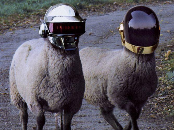 Daft punk funny sheep helmets photomanipulations wallpaper