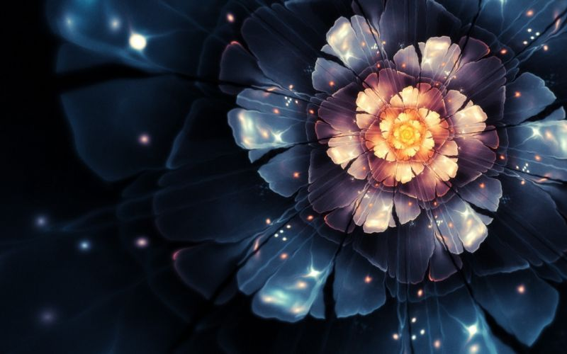 Flowers fractals bloom digital art wallpaper