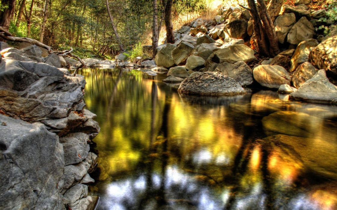 Nature forest woods streams hdr photography wallpaper
