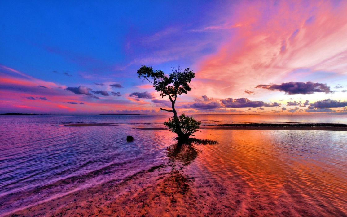 Water sunset clouds landscapes nature coast trees skyscapes wallpaper