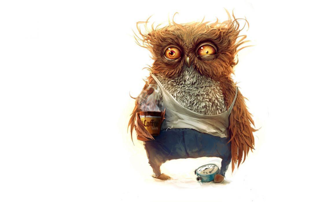 Coffee owls wallpaper