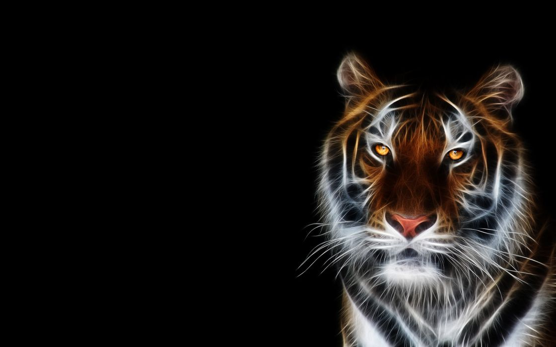 Tigers fractalius black background wallpaper