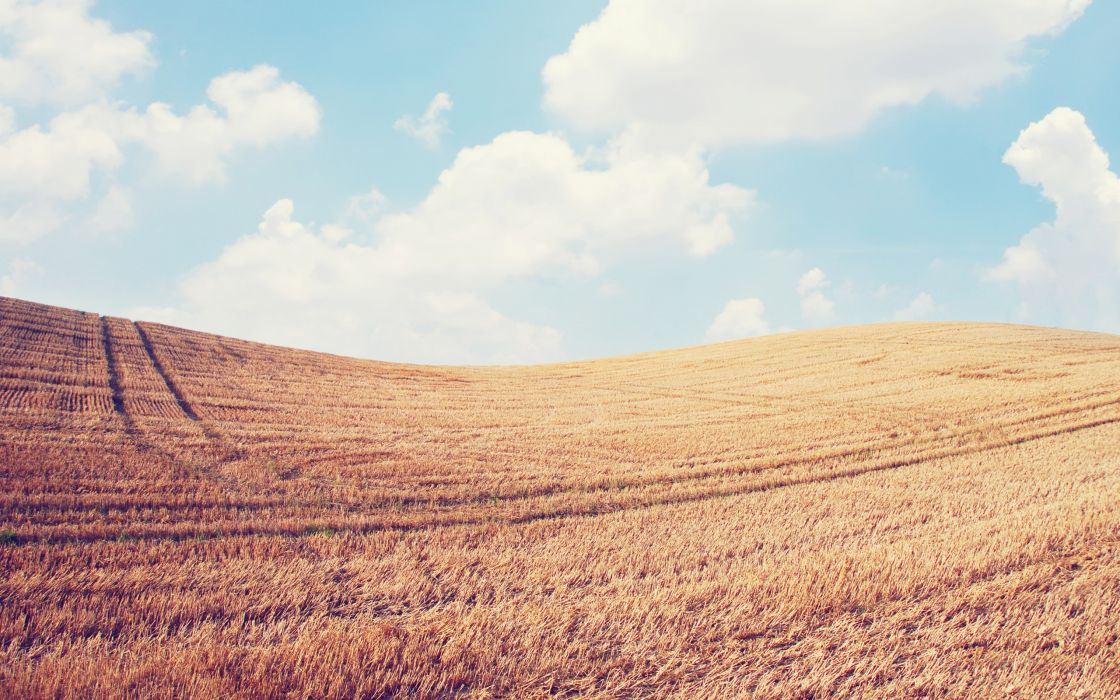 Clouds landscapes nature fields wheat sky-doll skyscapes wallpaper