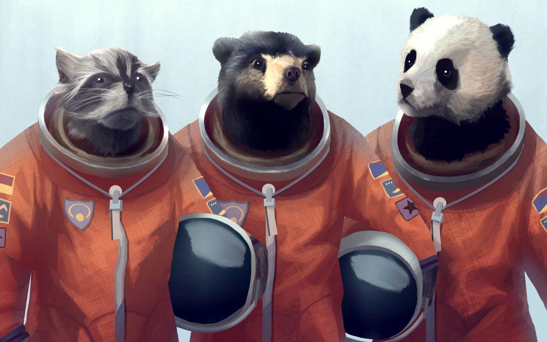 Animals panda bears creative artwork bears cosmonaut furry fandom racoon furry wallpaper