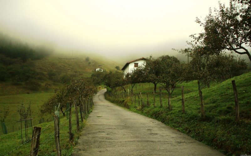 Landscapes nature houses fog depth of field wallpaper
