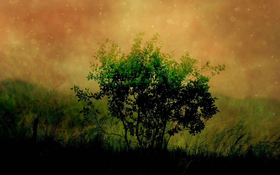 Nature photomanipulations wallpaper