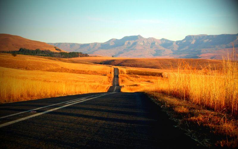 Roads roadrunner wallpaper