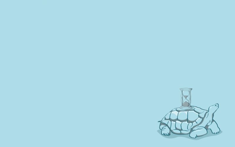 Minimalistic turtles wallpaper