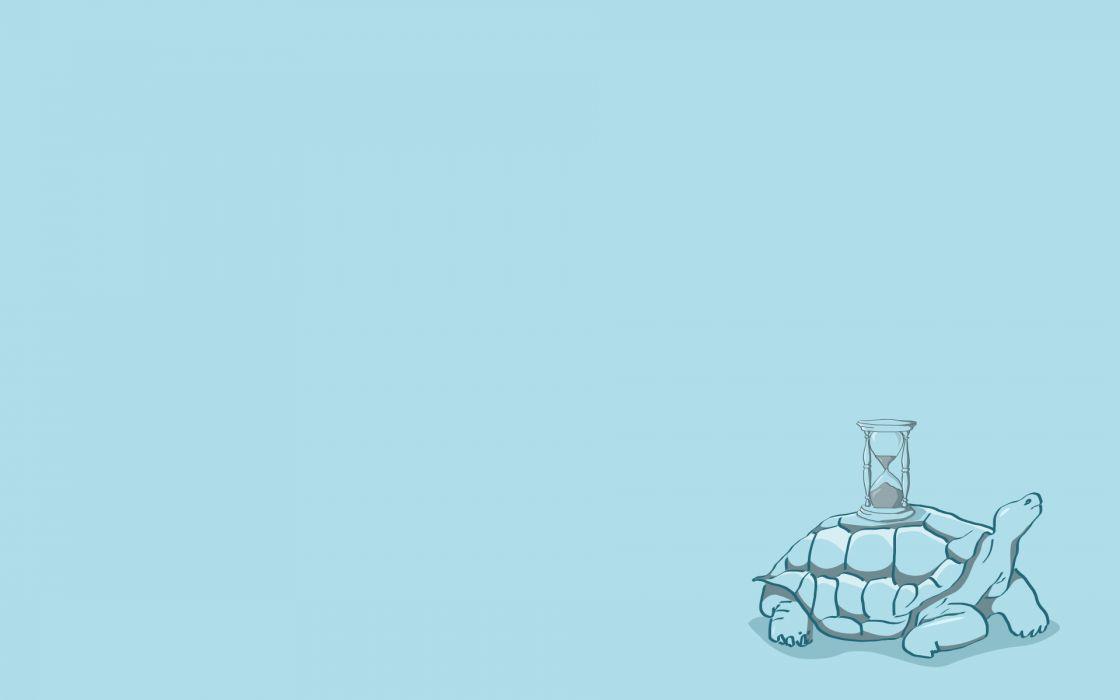 Minimalistic turtles wallpaper