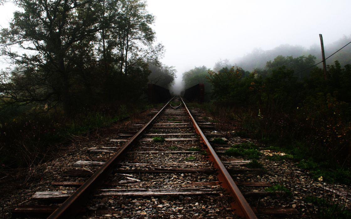 Trees railroad tracks wallpaper