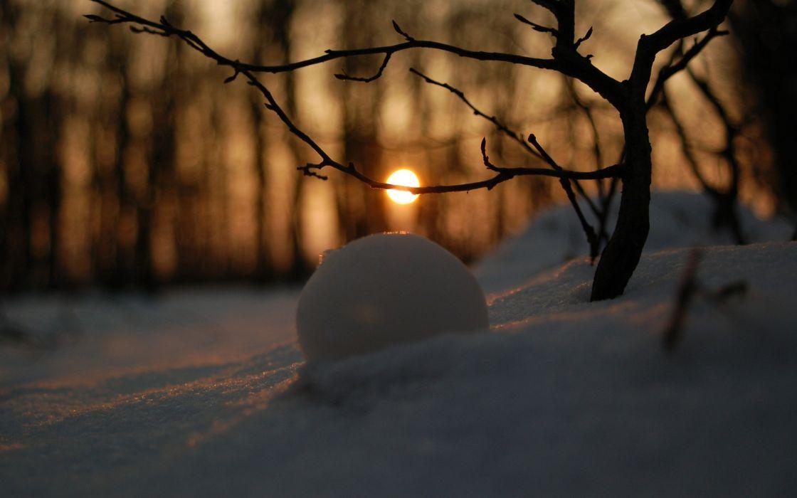 Winter snow sun wallpaper