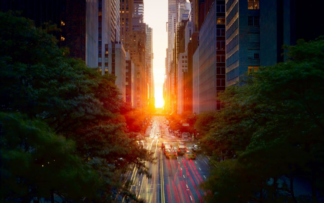 Sunset trees buildings cities wallpaper